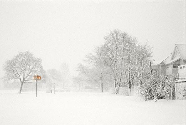 Winter Wonderland Decor The Renovation Diaries